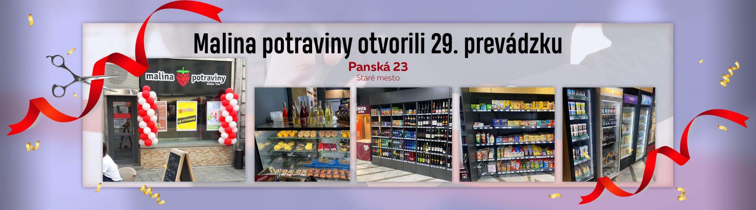 panska-web-banner-1